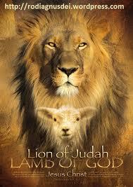lion and lamb blog