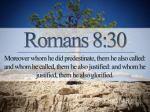 romans 8-30 predestined