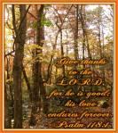 Psalm 118-1
