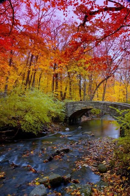 Toamna, fall color