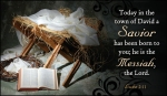 Christmas luke 2:11