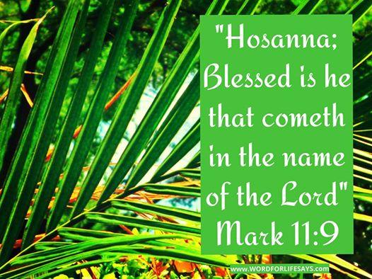 """Cei ce mergeau înainte şi cei ce veneau după Isus strigau: """"Osana! Binecuvântat este Cel ce vine în Numele Domnului! - Marcu 11:9"""
