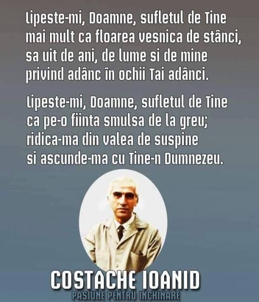 Costache Ioanid poezie poezii