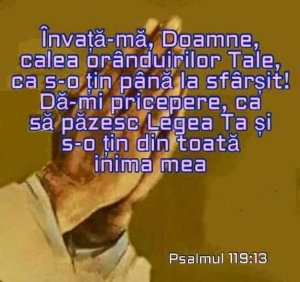 psalm 119 13