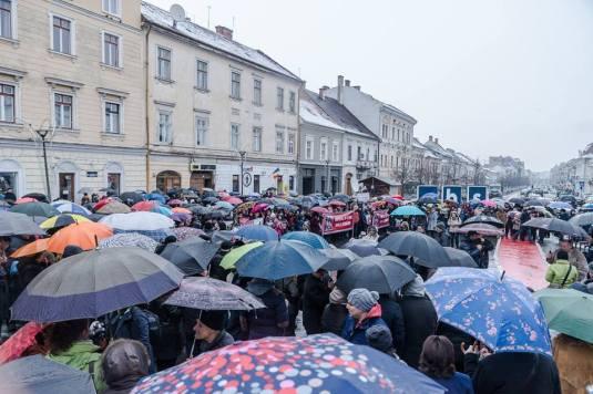 Poza Maria Goron - Protestul de la Cluj 9 ianuarie 2016