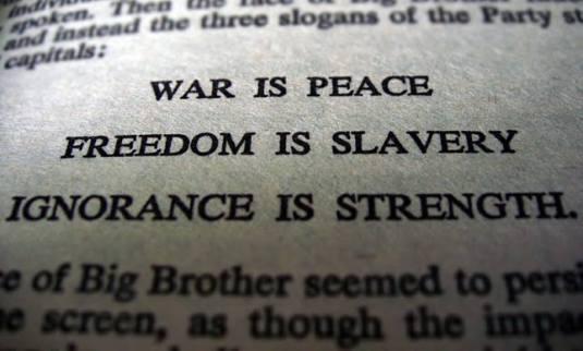 Ovidiu Vlad essay war is peace
