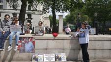 Protest pentru Florin Barbu si familii engleze in Londra Sambata 25 iunie 2016