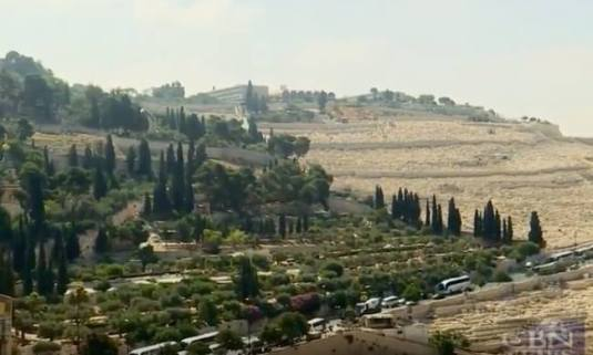 Muntele Maslinilor Mount of Olives Israel foto captura