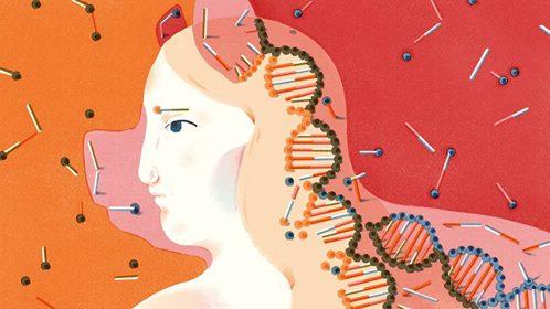 stemcellhybrid FOTO http://www.npr.org/