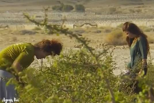 desertul-israelian-planta-pentru-templu