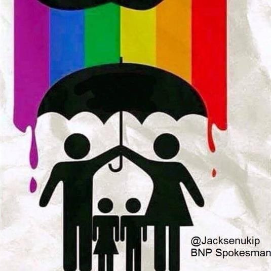 gay-flag-family