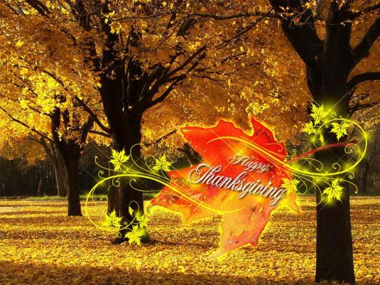 fallen-leaves-thanksgiving-day-wallpapers-com